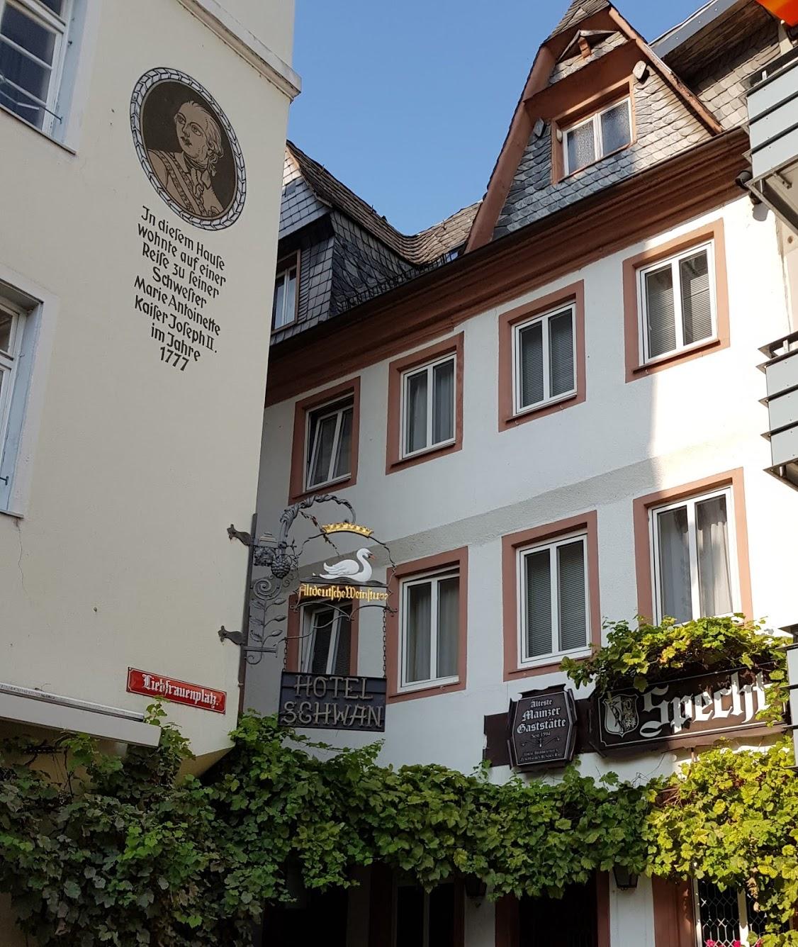 Mainz - Foto 1 Gisela Kentmann